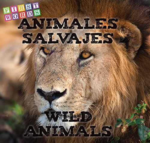 Animales Salvajes   Wild Animals  Rhea Wallace 1e4e831674f
