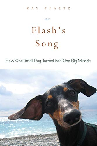Flash's Song: How One Small Dog Turned Into One Big Miracle: Pfaltz, Kay