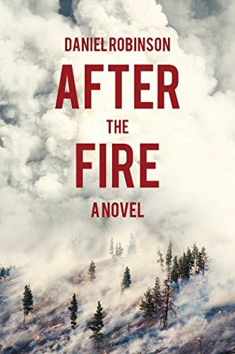 9781634503129: After the Fire: A Novel