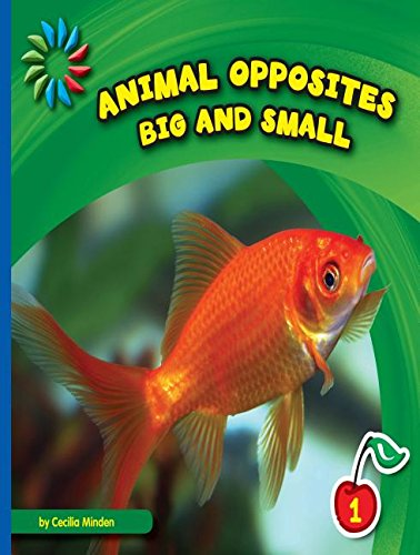 9781634705912: Big and Small (21st Century Basic Skills Library: Animal Opposites)