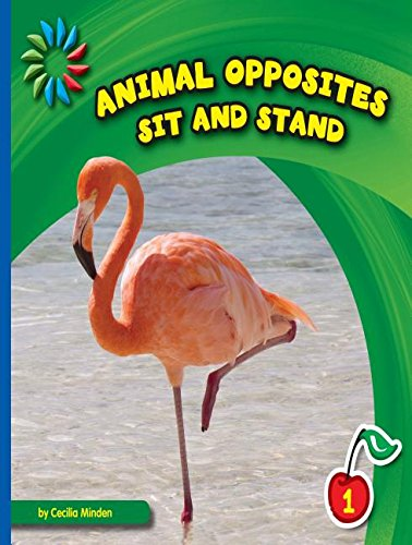 9781634705950: Sit and Stand (21st Century Basic Skills Library: Animal Opposites)