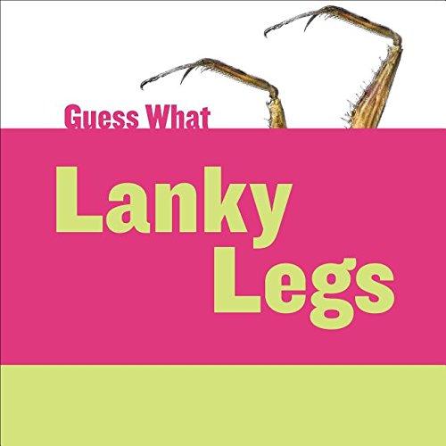 Lanky Legs: Praying Mantis (Guess What): Felicia Macheske
