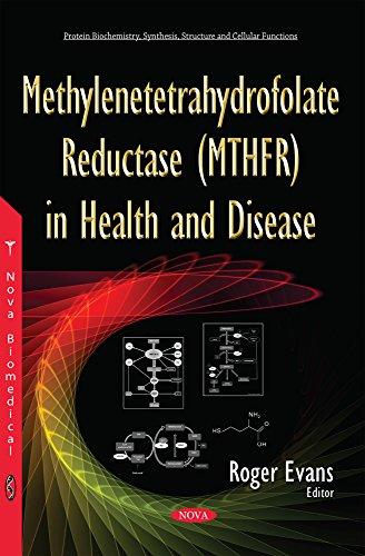 9781634833332: Methylenetetrahydrofolate Reductase - Mthfr in Health and Disease