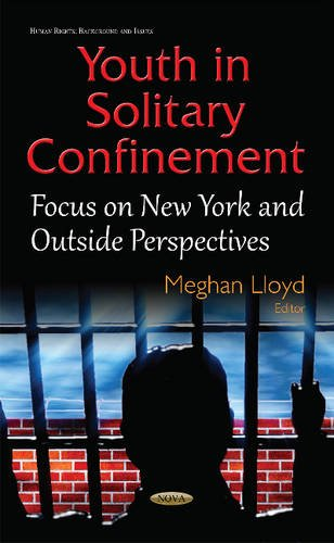 9781634835305: Youth in Solitary Confinement: Focus on New York and Outside Perspectives (Human Rights: Background and Issues)