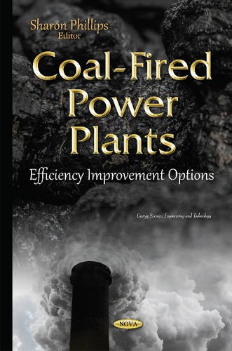 Coal-Fired Power Plants: Efficiency Improvement Options