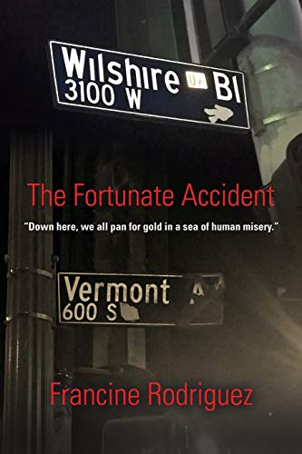 9781634904377: The Fortunate Accident