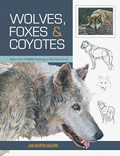 Wolves, Foxes and Coyotes (Wildlife Painting Basics)
