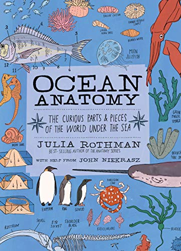 9781635861600: Ocean Anatomy: The Curious Parts & Pieces of the World under the Sea