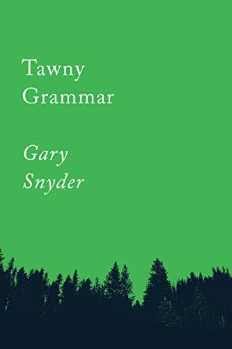 9781640091757: Tawny Grammar: Essays (Counterpoints Series)