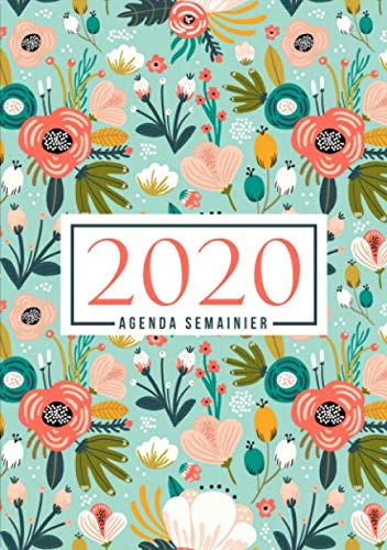 9781645209850: Agenda semainier 2020: Du 1er janvier 2020 au 31 décembre 2020 : aperçu hebdomadaire et mensuel, journal, planificateur & organiseur : Sarcelle et fleurs de corail 985-0