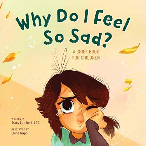 9781646117130: Why Do I Feel So Sad?: A Grief Book for Children