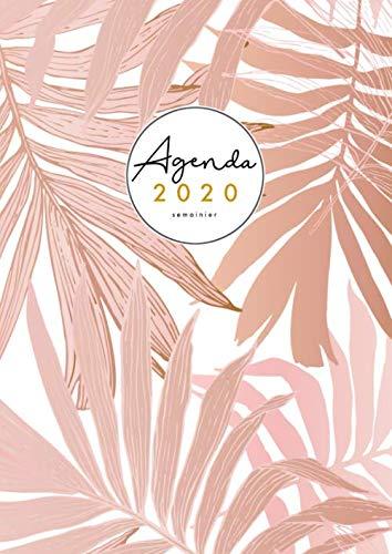 9781670952769: Agenda 2020 Semainier A4: Grand Agenda 2020 professionnel français - Planificateur 2020 - Janvier à Décembre 2020 - Tropical - Rose - Blanc