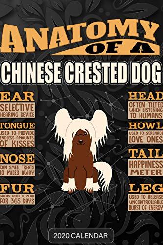 9781679696718: Anatomy Of A Chinese Crested Dog: Chinese Crested Dog 2020 Calendar - Customized Gift For Chinese Crested Dog Dog Owner