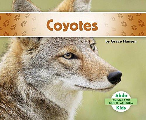 9781680801095: Coyotes (Animals of North America)