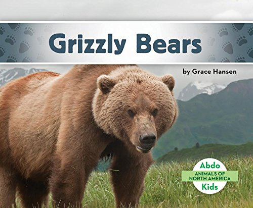 9781680801118: Grizzly Bears (Animals of North America)