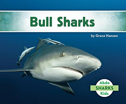 Bull Sharks: Grace Hansen