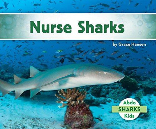 9781680801538: Nurse Sharks (Sharks Set 2)