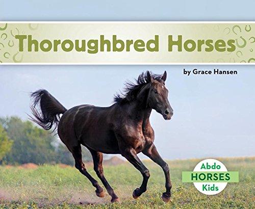 Thoroughbred Horses: Grace Hansen
