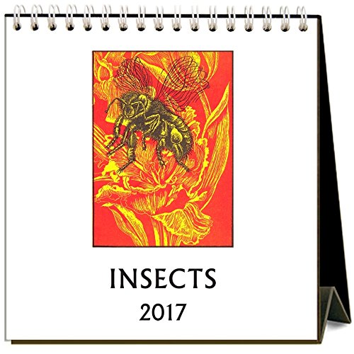 9781680811100: Insects 2017 Easel Calendar