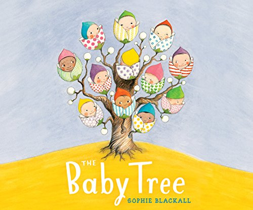 The Baby Tree: Sophie Blackall