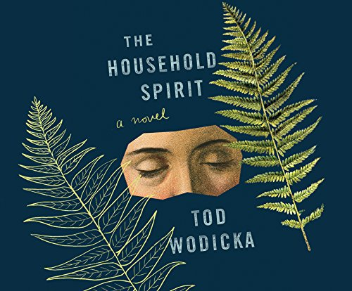 The Household Spirit (Compact Disc): Tod Wodicka