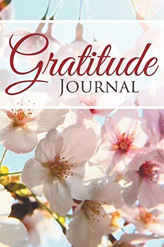 9781681450698: Gratitude Journal