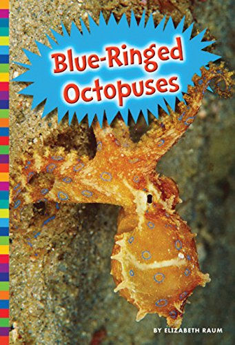 9781681520360: Blue-Ringed Octopuses (Poisonous Animals)