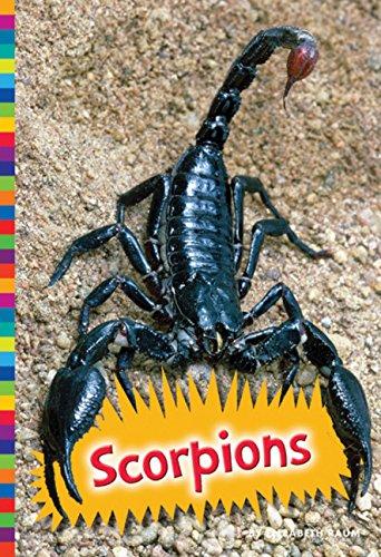 9781681520391: Scorpions