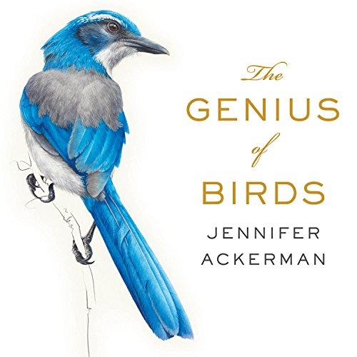 The Genius of Birds (Compact Disc): Jennifer Ackerman