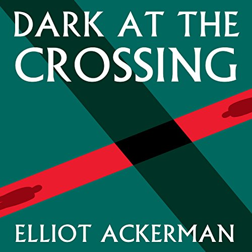 9781681682921: Dark at the Crossing