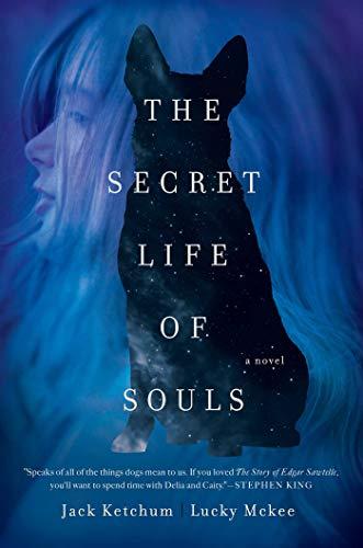 9781681772349: The Secret Life of Souls: A Novel