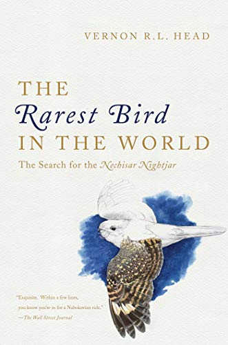 9781681773476: The Rarest Bird in the World: The Search for the Nechisar Nightjar