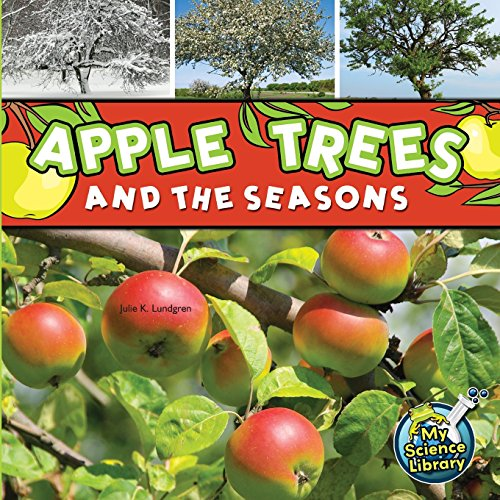 9781681910376: Apple Trees and the Seasons