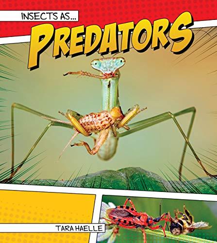 Insects as Predators (Hardcover): Tara Haelle