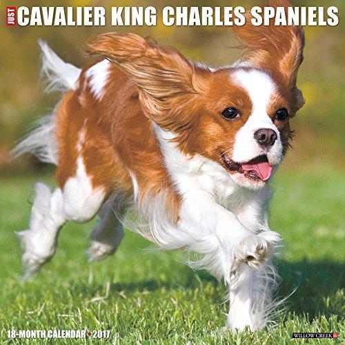 9781682340530: Just Cavalier King Charles Spaniels 2017 Wall Calendar