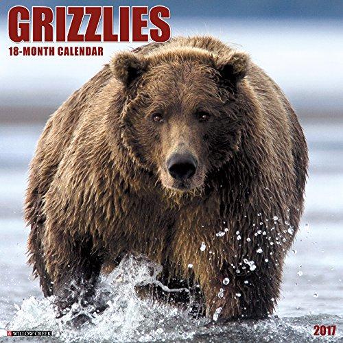 9781682341117: Grizzlies 2017 Wall Calendar