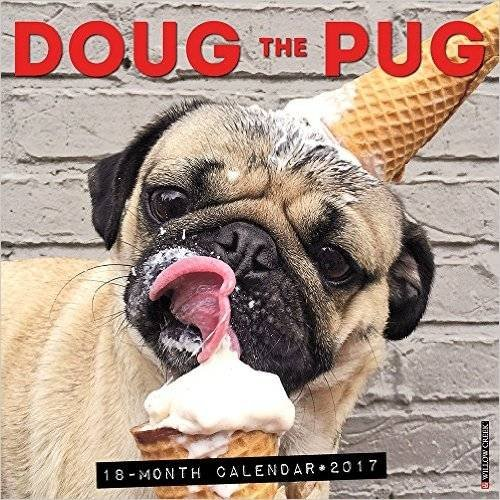 9781682342763: Doug the Pug 2017 Wall Calendar