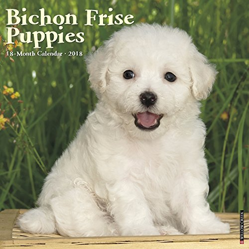 Bichon Frises Puppies 2018 Wall Calendar (Dog Breed Calendar)