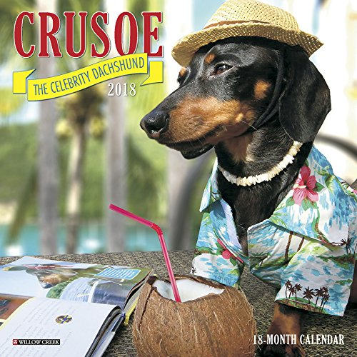 [R.E.A.D] Crusoe the Celebrity Dachshund 2019 Wall ...