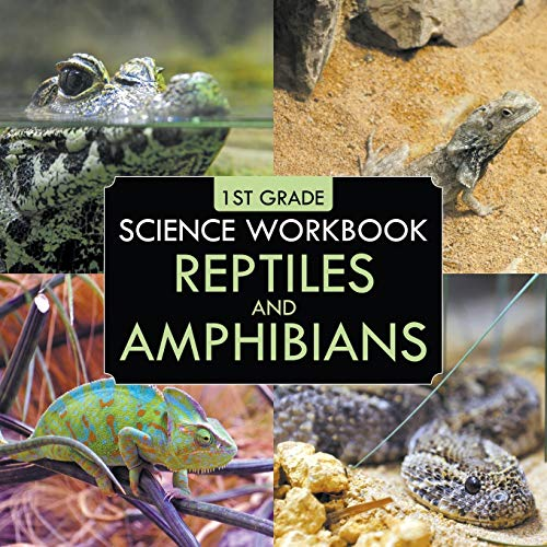 1st Grade Science Workbook: Reptiles and Amphibians: Professor, Baby