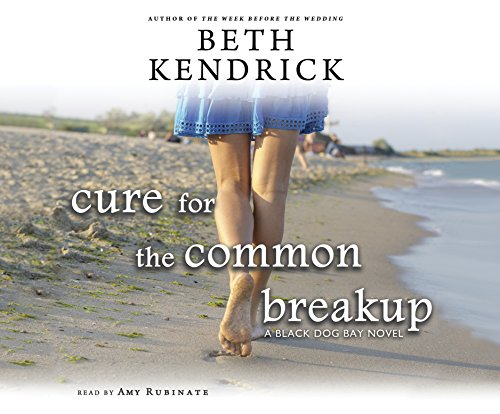 Cure for the Common Breakup (MP3 CD): Jamey Stagmaier