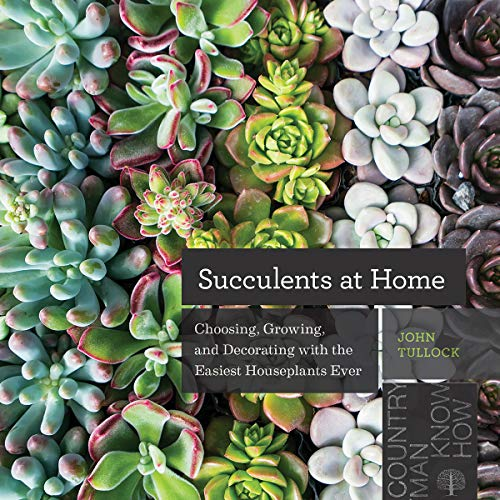 Book Cover: Succulents at Home: Choosing, Growing, and Decorating with the Easiest Houseplants Ever