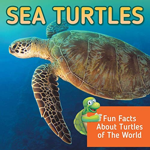 9781682800980: Sea Turtles: Fun Facts About Turtles of The World
