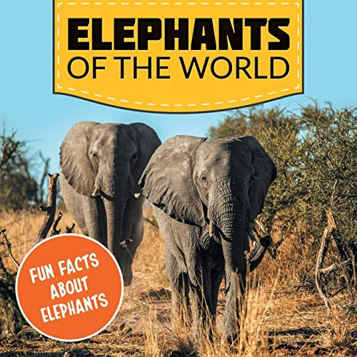 9781682801017: Elephants of the World: Fun Facts About Elephants