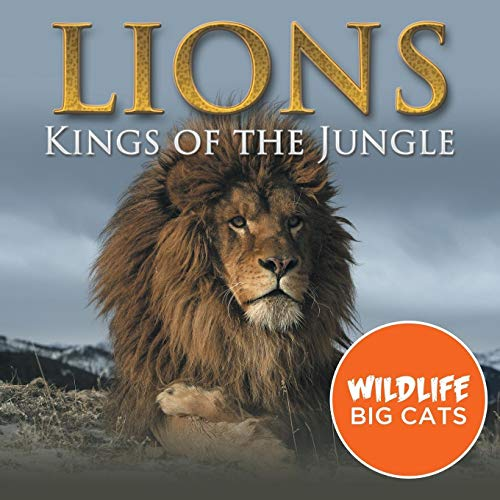 9781682801024: Lions: Kings of the Jungle (Wildlife Big Cats)