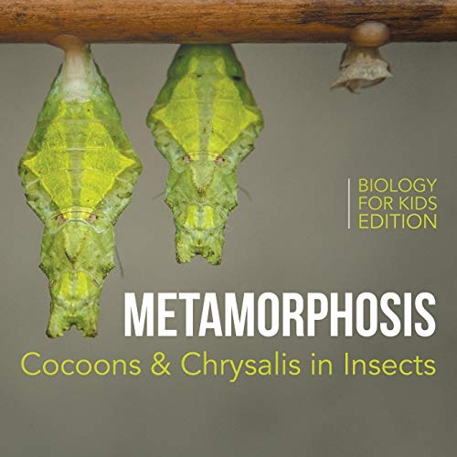 9781682806029: Metamorphosis: Cocoons & Chrysalis in Insects   Biology for Kids Edition