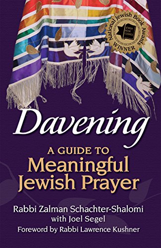 9781683360223: Davening: A Guide to Meaningful Jewish Prayer