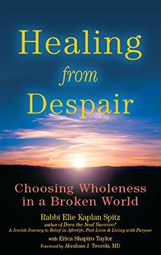 9781683361077: Healing from Despair: Choosing Wholeness in a Broken World