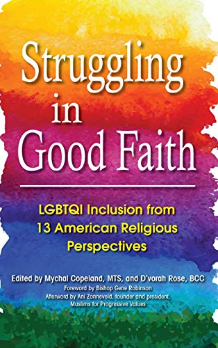 9781683363231: Struggling in Good Faith: LGBTQI Inclusion from 13 American Religious Perspectives