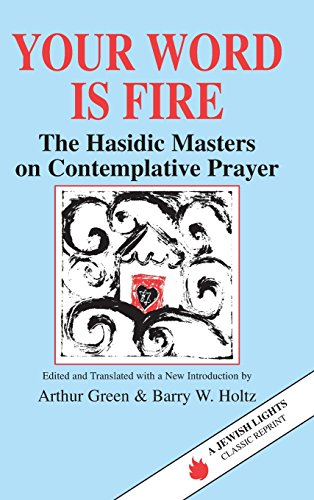 9781683365051: Your Word Is Fire: The Hasidic Masters on Contemplative Prayer